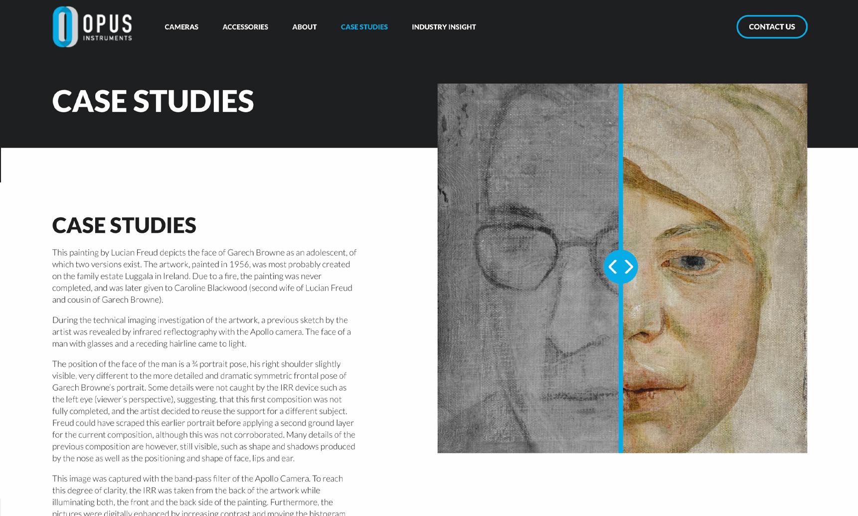 Case studies web build example